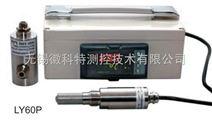 LY60P在线式温湿度露点仪