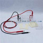 A130836-琼脂糖水平电泳仪(槽)(微型)