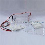 A130865-琼脂糖水平电泳仪(槽)(小号)