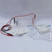 A130865-瓊脂糖水平電泳儀(槽)(小號)