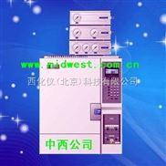 气象色谱仪(测固体VOC、配顶空进样器) 型 号:GGK11X/GC1690-G
