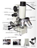 便携式显微镜 型 号:H7-BX-A
