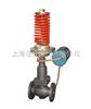 V230DV230D/V231D型自力式压力(差压)调节阀