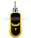 供应泵吸式氮气检测仪和便携式氮气检测仪DJY2000