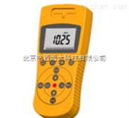 910型-核辐射仪