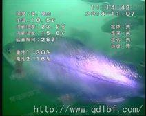 水下高清网络摄像机,水下摄像头价格