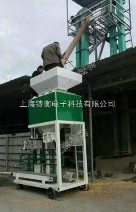 稻谷种子颗粒包装机经销商