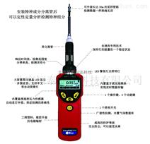 华瑞 UltraRAE 3000特种VOC检测仪