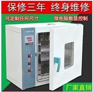 恒温烘箱,恒温干燥箱