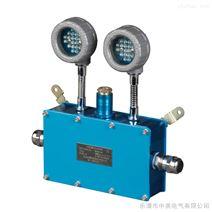 DBAJ01系列LED防爆双头应急灯