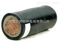 WDZ-YJF低烟无卤辐照电力电缆