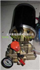 M387023北京高压洗车泵/直流柱塞泵