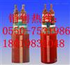BPGG变频电缆_BPGG变频电缆生产厂家